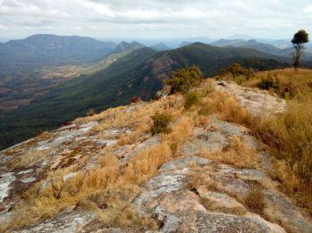 Matogoro Forest Reserve in Songea Ruvuma Tanzania.